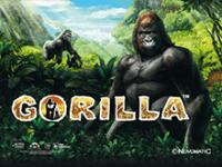 Играть на деньги в Gorilla